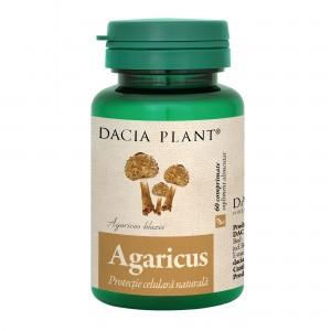 Agaricus 60 comprimate, Dacia Plant