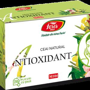 Ceai Antioxidant, M104, 20 plicuri cu snur, Fares
