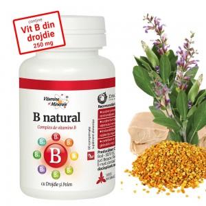 B Natural 60 comprimate, Dacia Plant