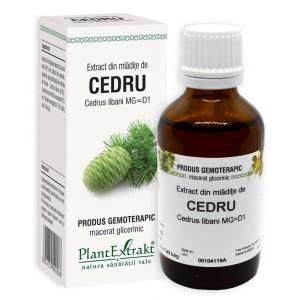Extract din mlădiţe de CEDRU - Cedrus libani MG=D1, 50 ml, PlantExtrakt