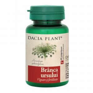 Branca Ursului, Dacia Plant, 60 comprimate