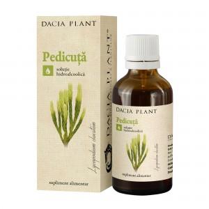 Tinctura de pedicuta, Dacia Plant, 50 ml