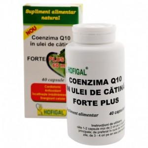 Coenzima Q10 in ulei de catina 60 mg forte plus , 40 capsule moi, Hofigal