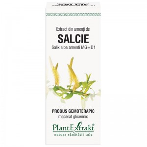 Extract din amenţi de SALCIE - Salix alba amenti MG=D1, 50 ml, PlantExtrakt