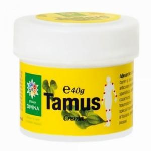 Crema de Tamus, 40 g, Steaua Divina